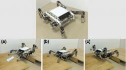 Hybrid quadruped tracked mobile robot