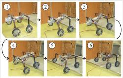 Leg wheel hybrid quadruped robot